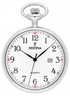 Zegarek męski Festina F2019-1