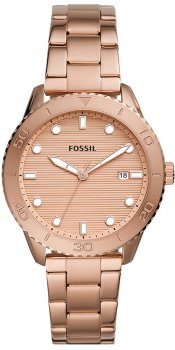 Zegarek  Fossil BQ3596